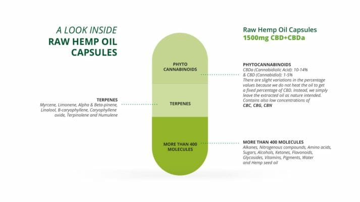 Raw Hemp Oil Capsules Infographic